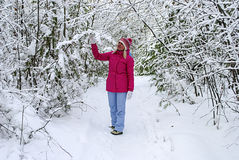Winter walk on the wood Royalty Free Stock Photography