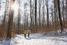 Winter walk in the woods. Couple walking through a snowy forest in winter Royalty Free Stock Photo