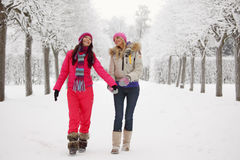 Winter walking Royalty Free Stock Images