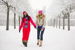 Winter walking Royalty Free Stock Photography