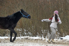 Winter walks with horse Stock Photos