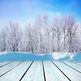 Winter walkway stock photography