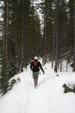 Winter-Wandern Lizenzfreie Stockbilder