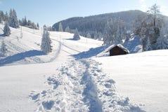 Winter wandernd Lizenzfreie Stockfotografie