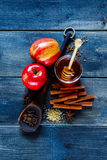 Winter warming spices Royalty Free Stock Photography