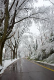 Winter in Washington DC Royalty Free Stock Photography