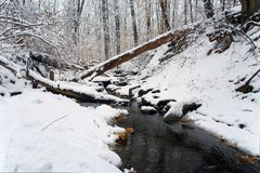 Winter in Washington DC: Rock Creek park Royalty Free Stock Photos