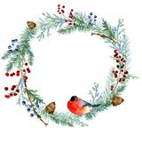 Winter watercolor painted Christmas wreath on white background royalty free illustration
