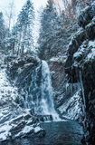 Winter waterfall in forest. With icicles and snow Stock Photos