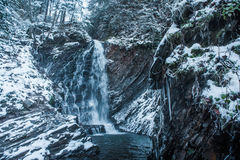 Winter waterfall in forest. With icicles and snow Stock Images