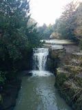 Winter waterfall trees winter cold jesmond Royalty Free Stock Photo