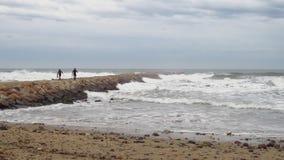 Winter waves stock video
