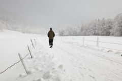 Winter way Royalty Free Stock Photography