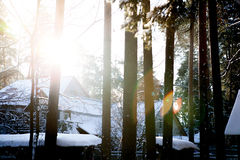 Winter  weather in forest. Sunny winter n weather in village Stock Photography