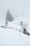 Winter weather in mountains with sleet Royalty Free Stock Images
