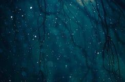 Winter Weather Night stock image