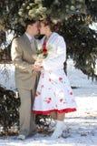 Winter wedding Royalty Free Stock Image