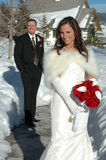 Winter Wedding Stock Images
