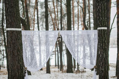 Winter wedding arch Royalty Free Stock Photo