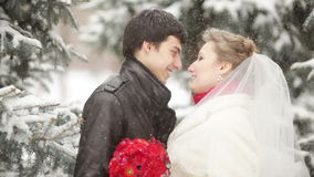 Winter wedding stock video