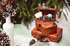 Winter wedding royalty free stock photography