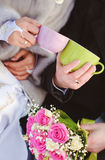 Winter wedding Royalty Free Stock Photography