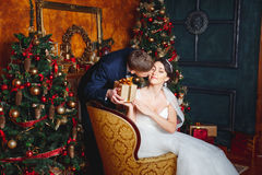 Winter Wedding .Lovers bride and groom in christmas decoration . Groom holding  Gift . romantic surprise for Christmas. Studio Stock Photo