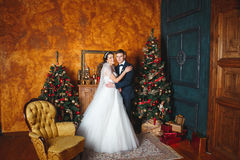 Winter Wedding .Lovers bride and groom in christmas decoration . HGroom and bride together. couple hugging. Wedding day. Royalty Free Stock Photo