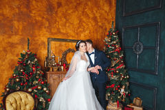 Winter Wedding .Lovers bride and groom in christmas decoration . HGroom and bride together. couple hugging. Wedding day. Royalty Free Stock Image
