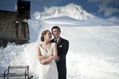 Winter wedding in the snow Stock Image