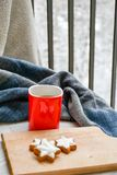 Winter weekend. Delicious home made  cinnamon  cookies ,cup of  tea ,and warm  sarf  in a  balcony in snowy day. Lazy winter weekend with a book on the sofa Royalty Free Stock Photos