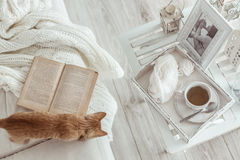 Winter weekend. Still life details, cup of tea on retro vintage wooden tray on a coffee table in living room, top view point. Lazy winter weekend with a book on Royalty Free Stock Photography