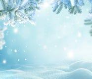 Winter-Weihnachtshintergrund mit Tannenbaumast Stockbilder