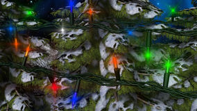 Winter-Weihnachtstannen-Baum mit Lichtern Stockfoto