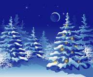 Winter-Weihnachtswald nachts Stockbild