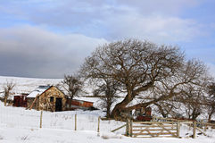 Winter on the Welsh hills Stock Photo