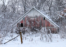 Winter White Barn Stock Image