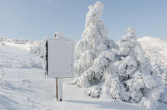 Free Winter White Snow. Christmas Background With Snowy Fir Trees The Most Beautiful Landscape,Sobaeksan Mountain In Korea Stock Photo - 61506680