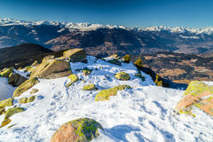 Winter white snowy mountains and green conifers Royalty Free Stock Images