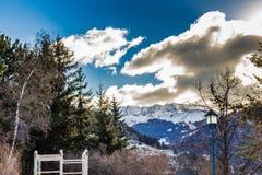 Winter white snowy mountains and green conifers. White snowy Dolomites mountains with rocks, snow-capped peaks and green conifers in winter Royalty Free Stock Photo