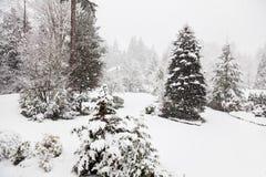 Winter Whiteout Lizenzfreie Stockfotografie
