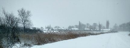 winter wiejski krajobraz Fotografia Royalty Free