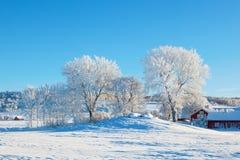 winter wiejski krajobraz zdjęcie stock