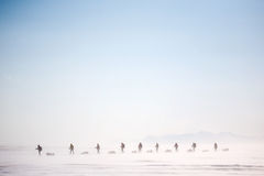 Winter Wilderness Adventure. A group of people on a winter expedition in a snow storm stock images