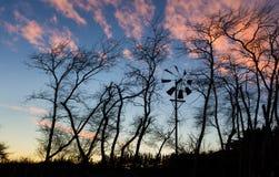 Winter Wind Dawn Stock Photo