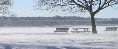 Free Winter Wind Next To River Royalty Free Stock Photo - 111996265