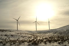 Winter Wind-Turbine-Oregon-Snowy lizenzfreie stockfotografie