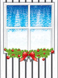 Winter through a window Royalty Free Stock Image