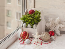 Winter window with Christmas toys   and Selaginella martensii Royalty Free Stock Photography