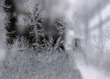 Winter Window Frost, Frost Pattern. Abstract Royalty Free Stock Photo